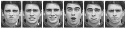 Les 6 émotions primaires